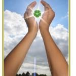 Fonti rinnovabili, 'Nel solare, Romani permettendo, il futuro dell'energia'