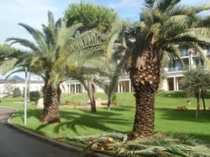 La casa al mare nel Lazio, l'immobiliare a Tarquinia Lido