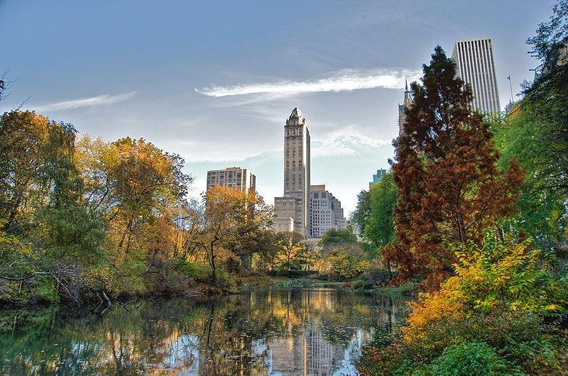 Madonna Vende Il Suo Appartamento Con Vista Su Central Park