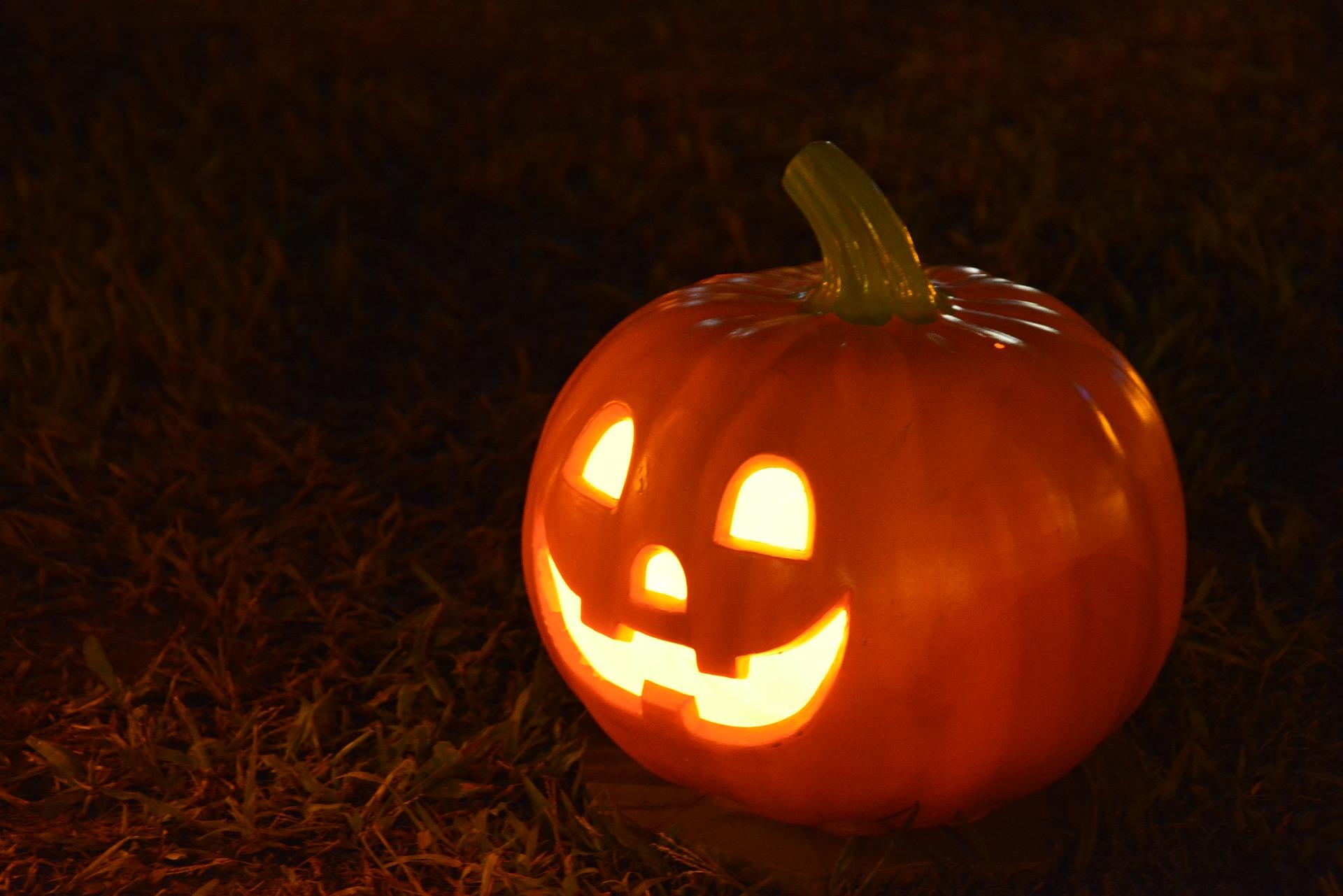 pumpkin-1544602_1920