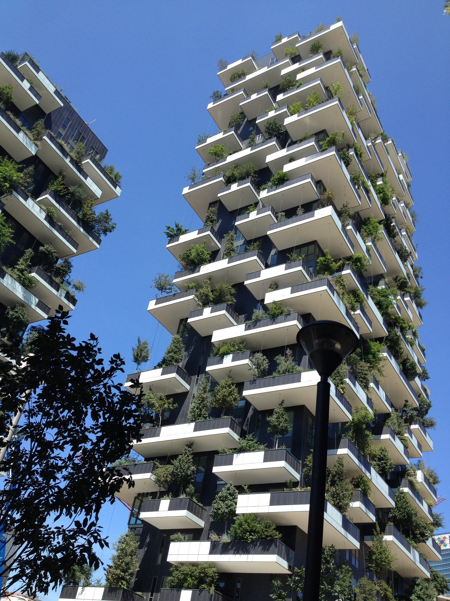 vertical-forest-1791368_1920